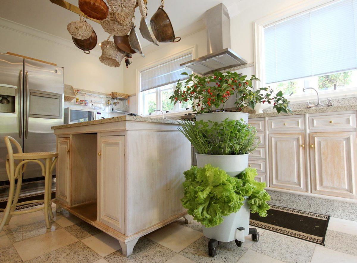 Horta Vertical Praticidade E Alimentos Fresquinhos Todo Dia Thony ~ Horta De Temperos Na Cozinha
