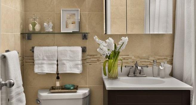 9 dicas para organizar o banheiro thony for Como decorar un antejardin pequeno