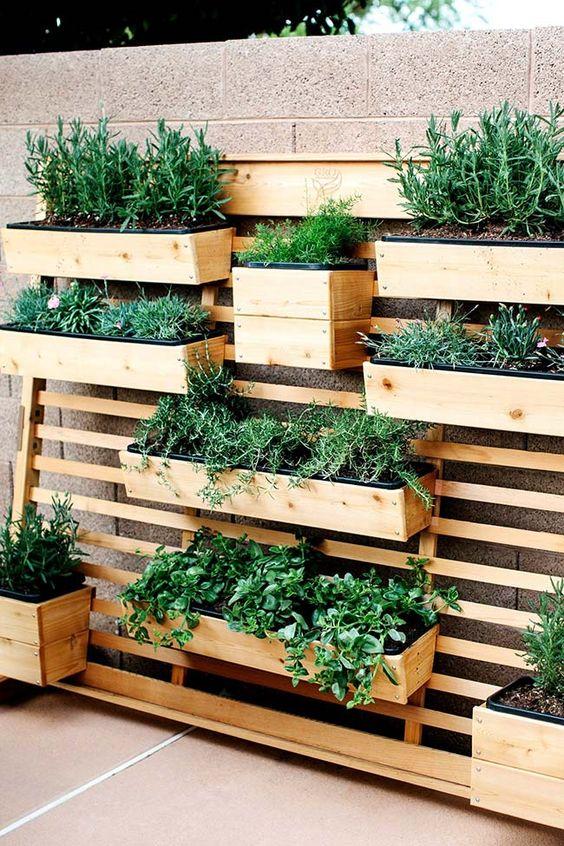 ideias quintal pequeno jardim vertical