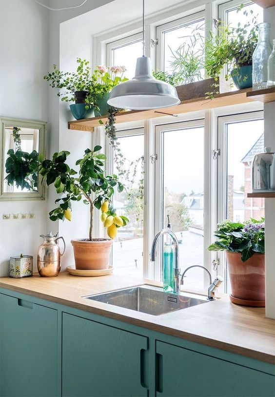 ideias cozinha horta