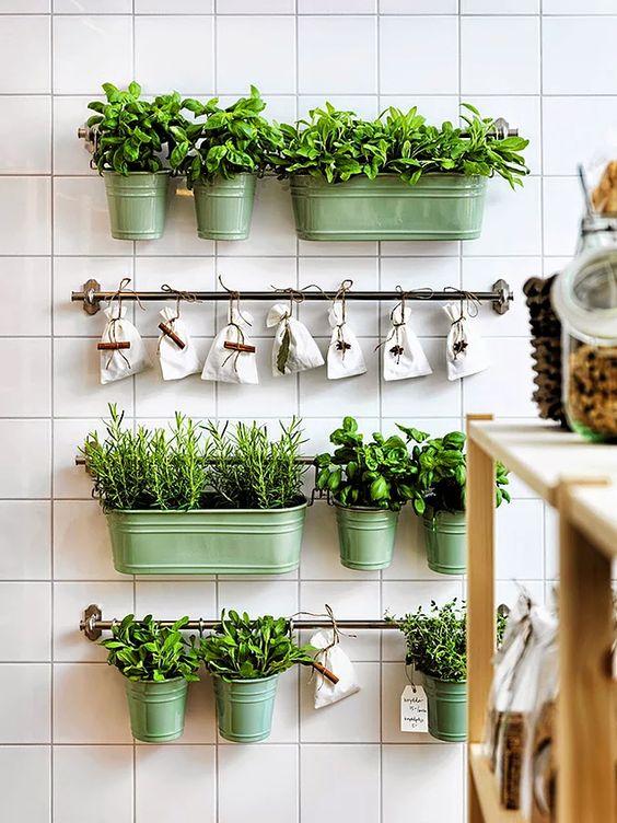 ideias horta cozinha